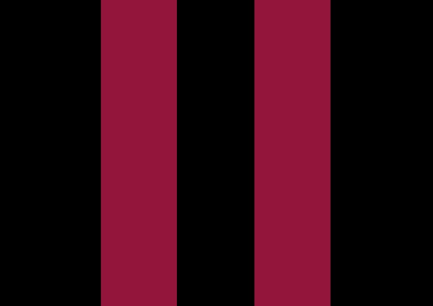 Black with burgundy stripes